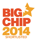 Big Chip Award 2014 Logo Web Design