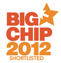 Big Chip Award Logo Web Design
